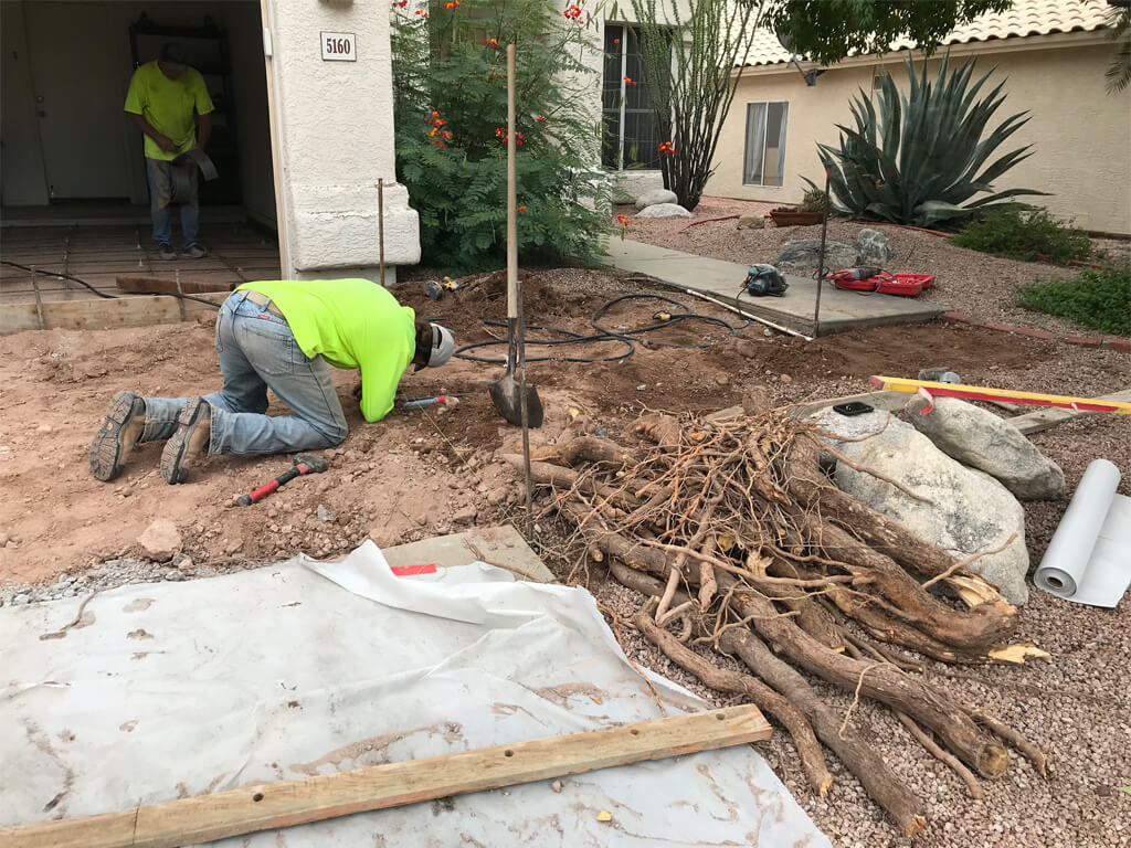 concrete root removal